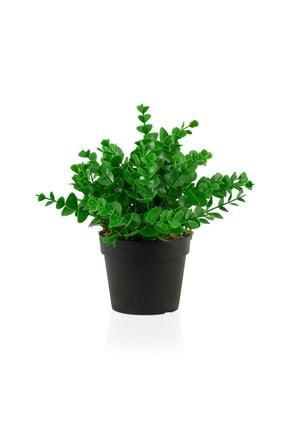 çiçekmisin Siyah Mini Plastik Saksıda Yapay Demet 1