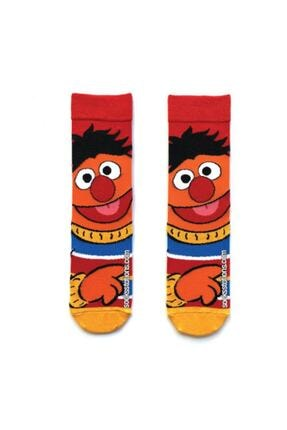 Socks Stations 6'lı Çizgi Film Çorap Kutusu 3