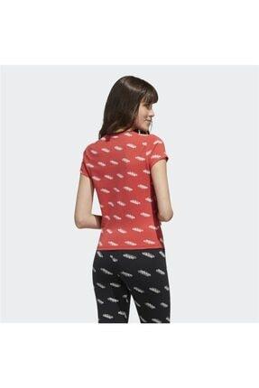 adidas Kadın Spor T-Shirt 2