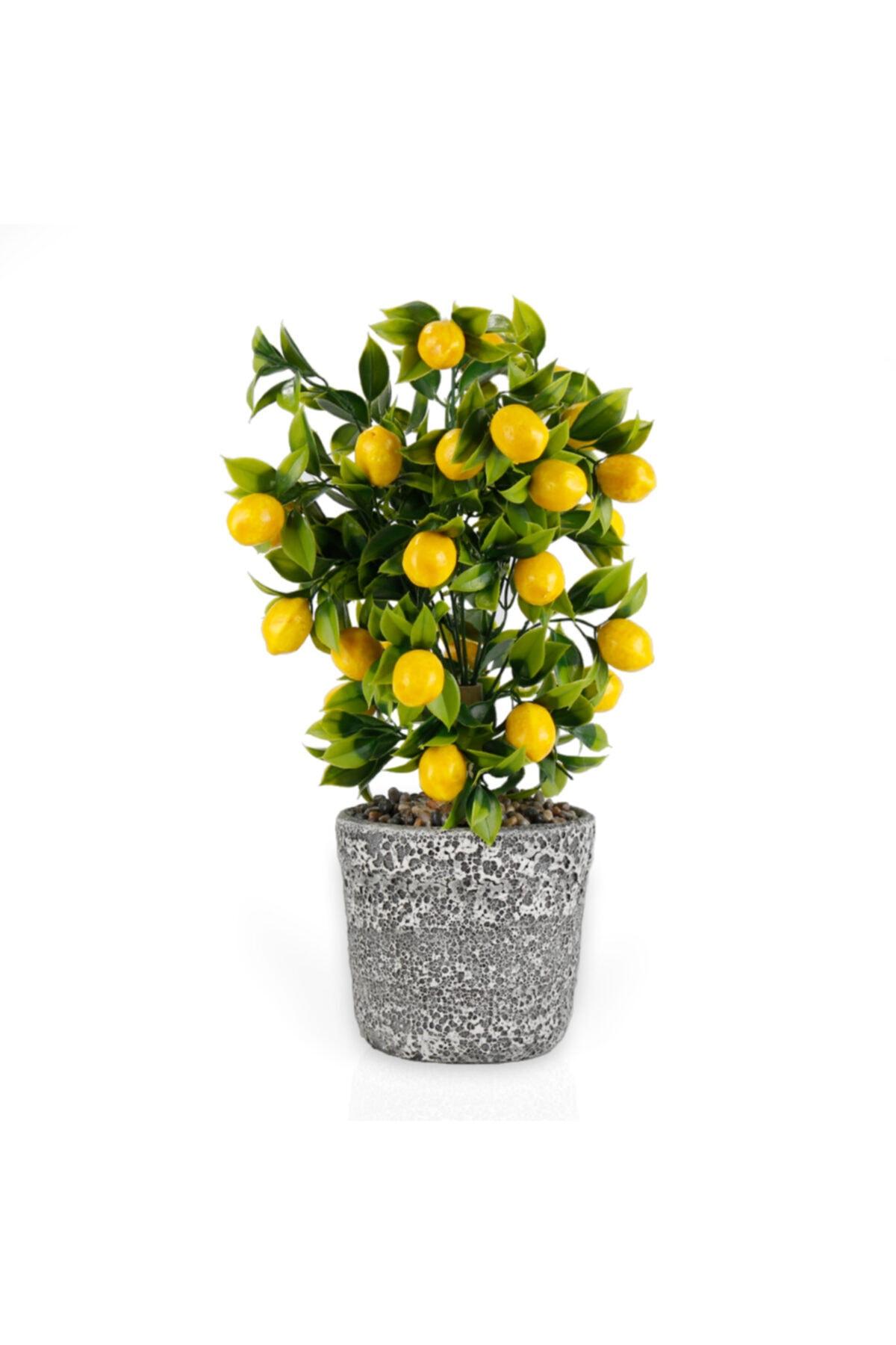 Porselen Saksıda Yapay Limon Ağacı