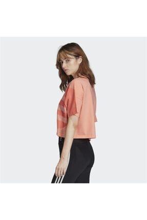 adidas Fm2559 Lrg Logo Tee T-Shirt 1