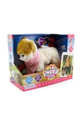 My Puppy Parade Yürüyen Köpeğim Sammy 2