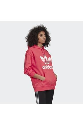 adidas Adicolor Kadın Sweatshirt - Gd2439 2
