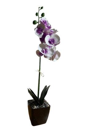 MAK TİCARET Mor Orkide 0