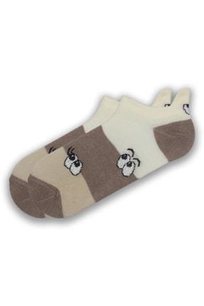 Modernity Kadın Renkli Göz Desenli 6'lı Çorap Seti 3