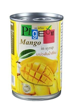Mango Meyvesi MangoMeyvesi47