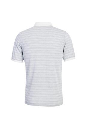 Kiğılı Polo Yaka Desenli Regular Fit Tişört 1