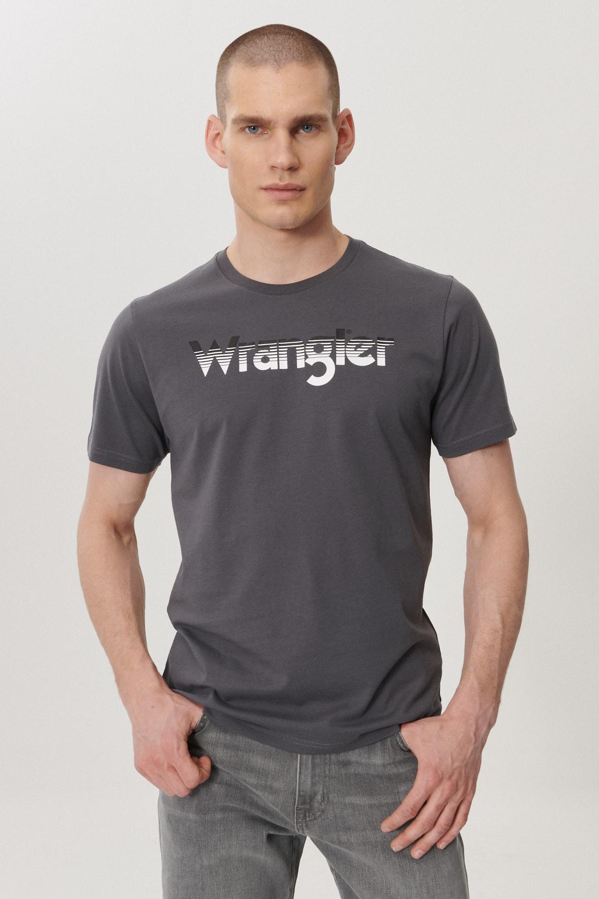 Erkek Antrasit Regular Fit Bisiklet Yaka T-Shirt