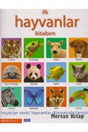 Parıltı Yayıncılık Ilk Hayvanlar Kitabım 0
