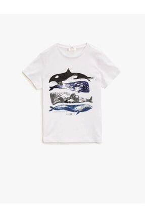Koton Koton Erkek Çocuk T-shirt Beyaz 0