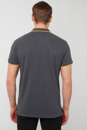 Buratti Erkek % 100 Pamuklu Polo T Shirt 3