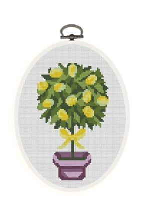 Favore Casa Esta Rosa Çerçeveli Kaneviçe Kiti Oval Küçük Saksı Limon Etamin Goblen Set 19x14,50 cm 0
