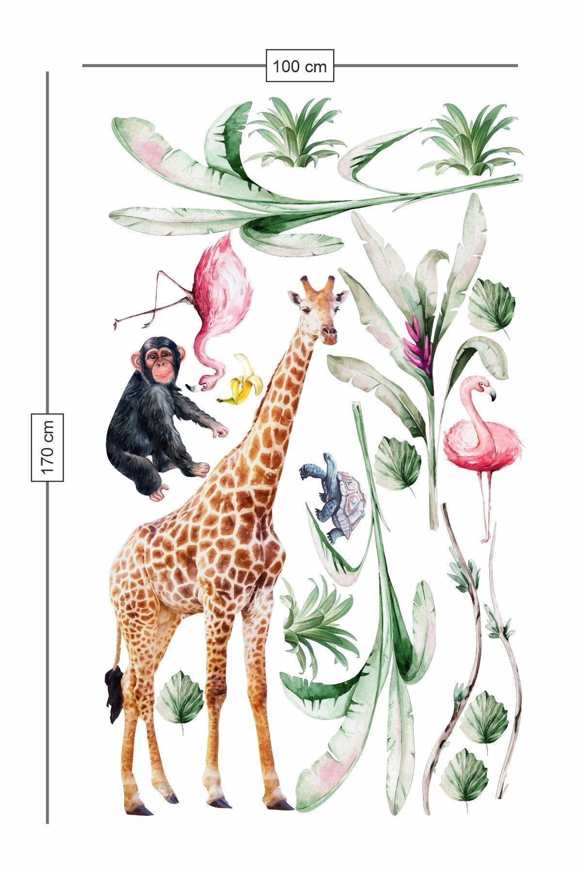PİKSELİFE Tropikal Hayvanlar Çoçuk Odası Duvar Sticker