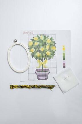 Favore Casa Esta Rosa Çerçeveli Kaneviçe Kiti Oval Küçük Saksı Limon Etamin Goblen Set 19x14,50 cm 1