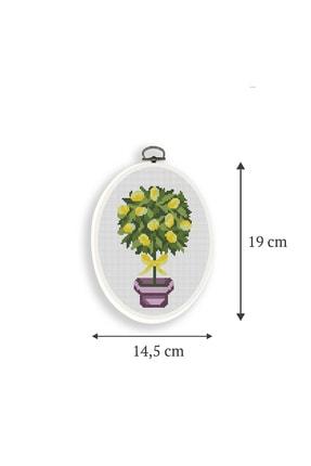 Favore Casa Esta Rosa Çerçeveli Kaneviçe Kiti Oval Küçük Saksı Limon Etamin Goblen Set 19x14,50 cm 2