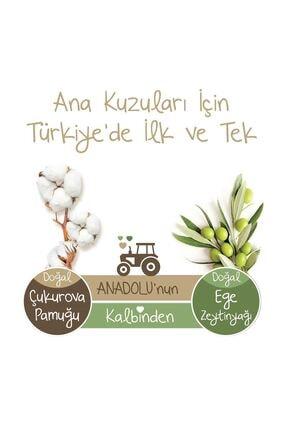 Baby Turco Doğadan 2 Numara Mini 210 Adet + 3x60 Doğadan Islak Havlu Hediyeli 4