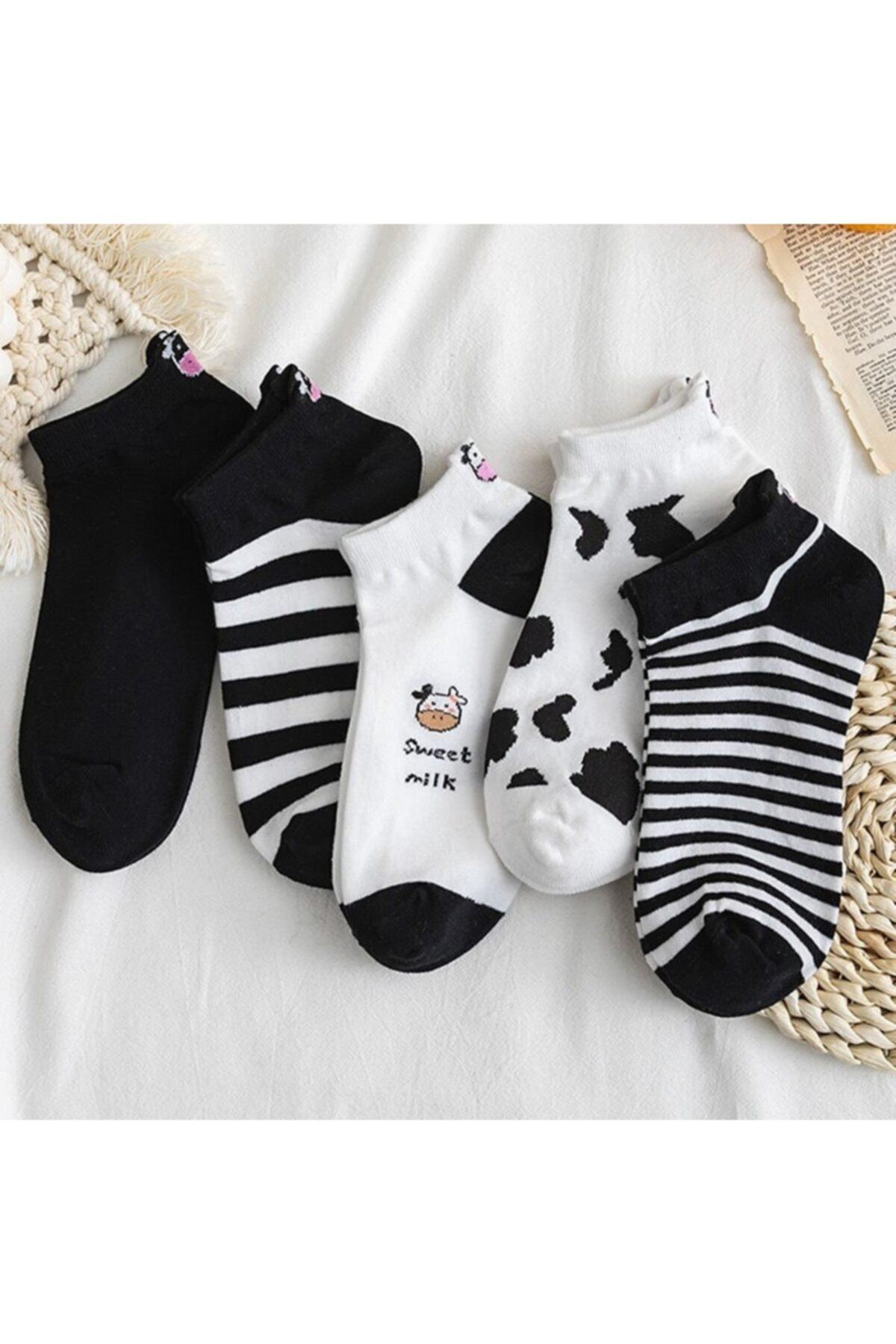 Kadın Siyah Beyaz İnek Desenli Nakışlı Patik Çorap 5 Çift