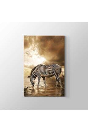 TabloHane Zebra Kanvas Tablo 0