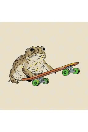 TatFast Frog On Skateboard Kupa 2