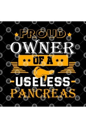 TatFast Diabetes Awareness Tee Proud Owner Of A Useless Pancreas Kupa 2