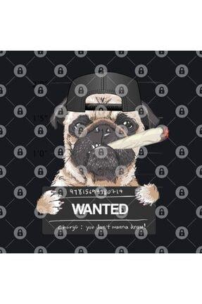 TatFast Bad Wanted Pug Kupa 2