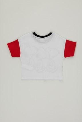 PAULMARK Kız Çocuk T-shirt 1