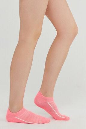Penti Pembe Gri Beyaz Act.cekcek Neon 3lü Patik Çorap 0
