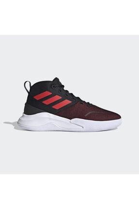 adidas Erkek Bordo Basketbol Ayakkabısı fy6008 0
