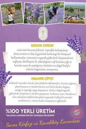 Gallipoli Lavender Doğal Bitkisel Lavanta Yağlı Bebek Şampuanı 500 ml 2