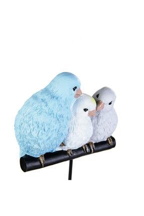 Karaca Nature Aile Kuş 1