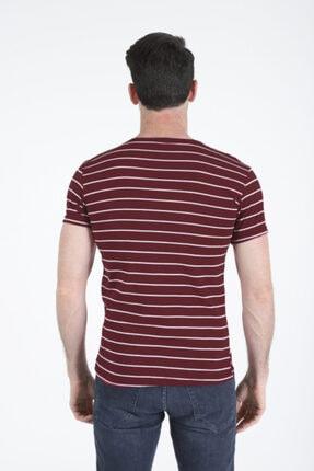 Bifery Erkek Bordo Çizgili Basic T-shirt 1
