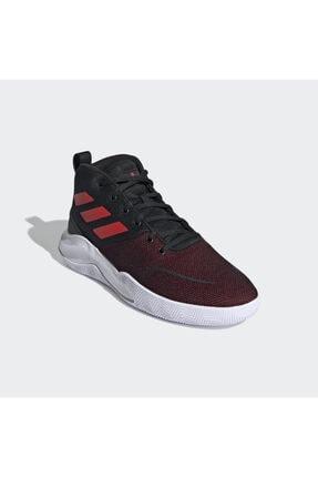 adidas Erkek Bordo Basketbol Ayakkabısı fy6008 3