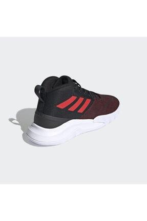 adidas Erkek Bordo Basketbol Ayakkabısı fy6008 4