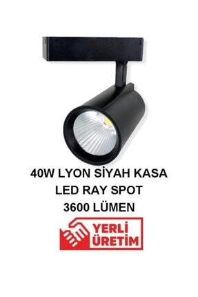 40w Siyah Kasa Lyon Ray Spot - Beyaz Işık rsp112
