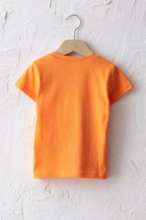 LC Waikiki Erkek Bebek Turuncu Fkl T-Shirt 1