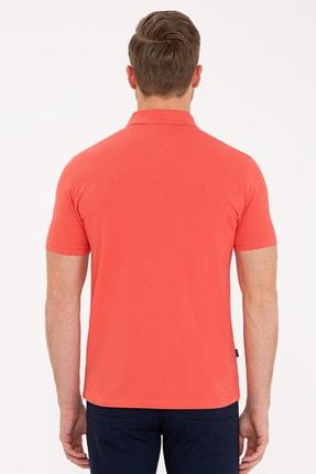 Pierre Cardin Somon Slim Fit Basic Polo Yaka T-Shirt 2