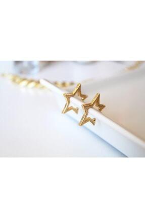 Cherybiju Gold Yıldız Sıkıştırmalı Kıkırdak Küpe [adet] 0