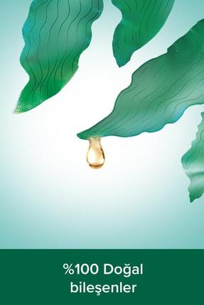 Palmolive Aroma Sensations So Firm Banyo Ve Duş Jeli 500 ml X 2 Adet Duş Lifi Hediye 3