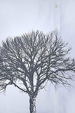 Tween Beyaz Gomlek - 9TC02KD00238-801 4