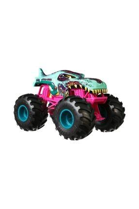 HOT WHEELS Monster Trucks 1:24 Arabalar GCX24 0