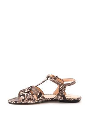 ROUGE Hakiki Deri  Kadın Groccıa Yılan Sandalet 181RGK720 0197-85 3