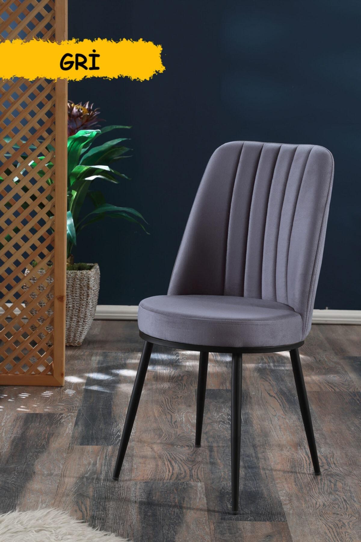 Gold Sandalye Gri - Metal Siyah Ayaklı