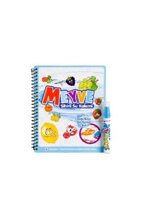 DEEMBRO Sihirli Boyama Kitabı Özel Kalemi Özel Set Dinozor Ve Meyveler 2 Li Set 2