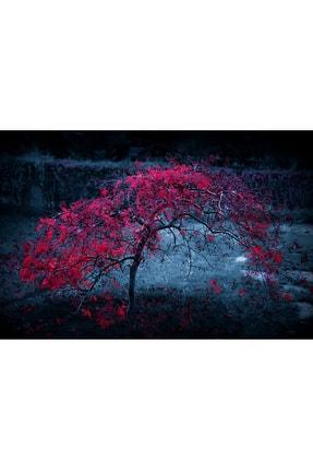 Shop365 Kırmızı Ağaç Kanvas Tablo 45 X 30 cm 0