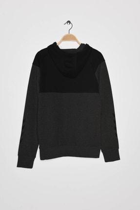 HUMMEL Erkek Spor Sweatshirt - Hmlfred Hoodie 1