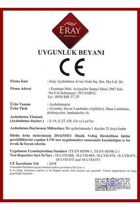 Eray Aydınlatma 2002-2 Eskitme Led Avize 4