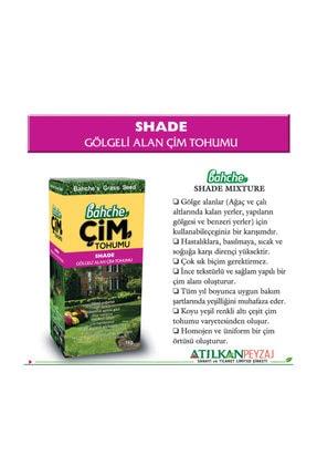 Bahche Ithal  Gölgeli Alan Çim Tohumu 1 kg 1