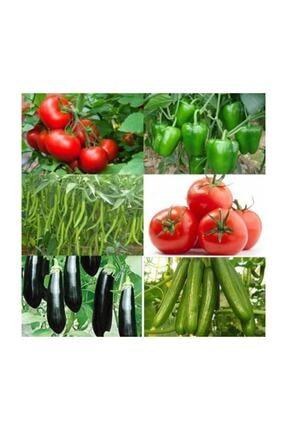 Universal Tam 500 Adet Sertifikalı Domates -salkım Domates-biber-salatalık-patlıcan-dolma Biber Tohumu + Gübre 0
