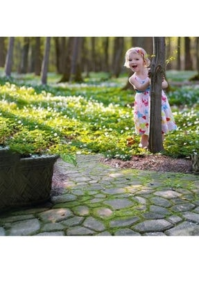 Taşmatik Bahçe Taş Kalıp Beton Kalıbı Zemin Kaplama Kalıbı 42x40 Cm 4 Adet Tm669 1
