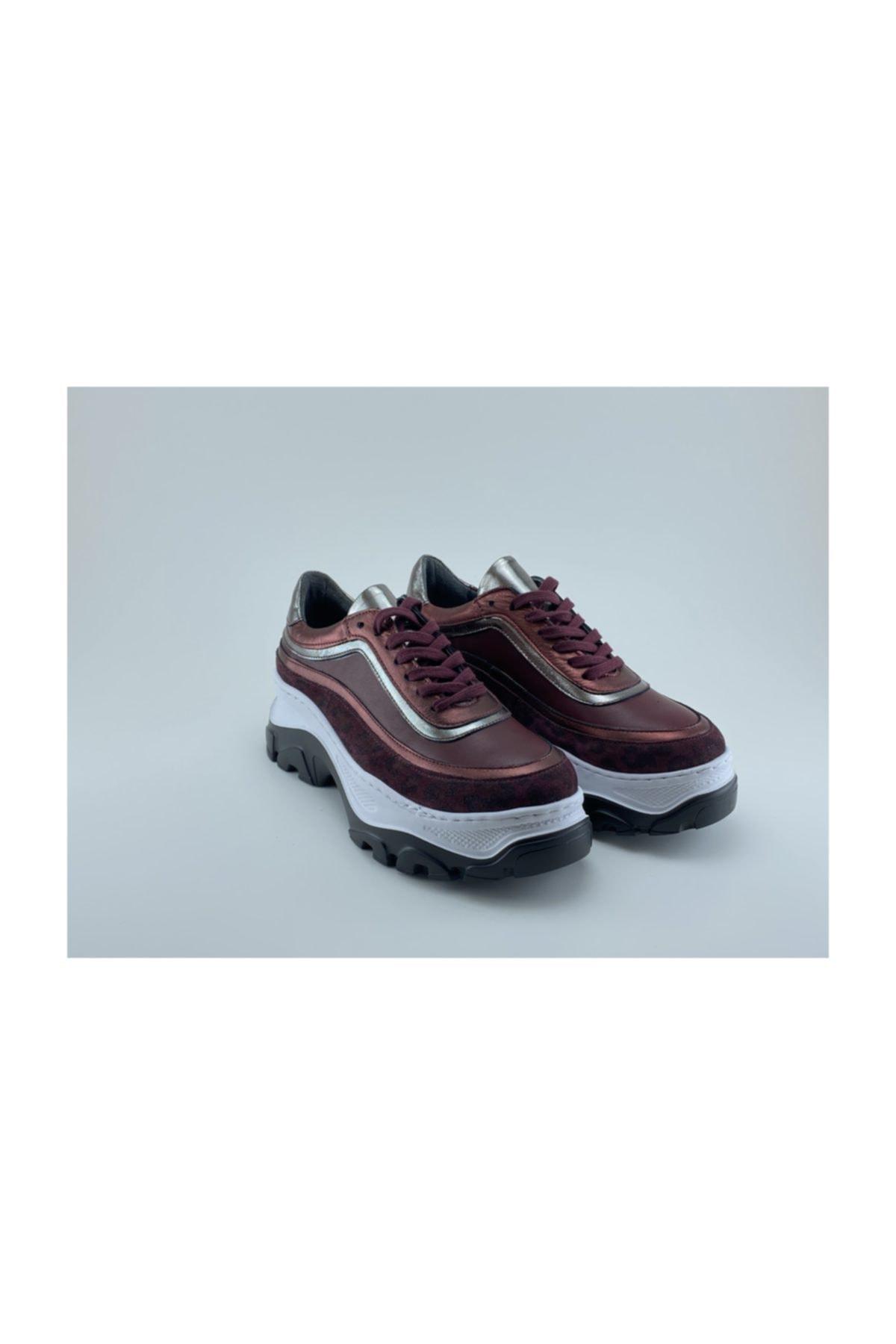 Aquila Sneakers